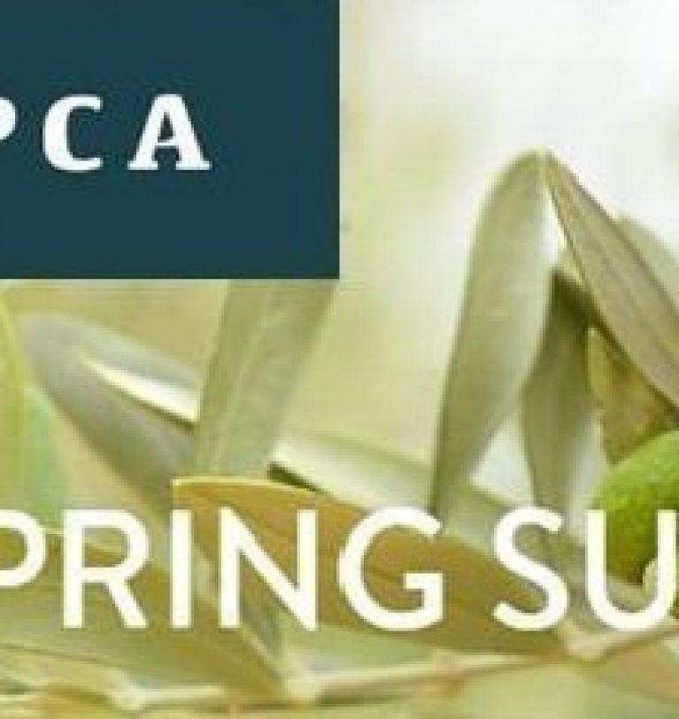 Symborg participa en la tercera edición del Spring Summit de CAPCA