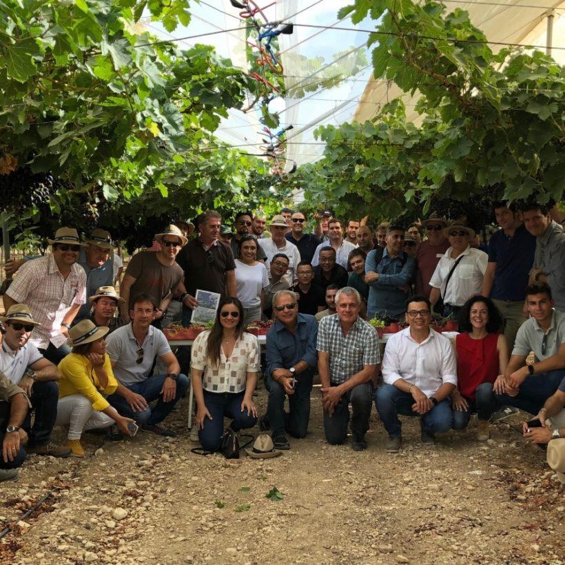 Productores de uva de mesa de 5 países visitan Murcia para conocer las variedades de ITUM