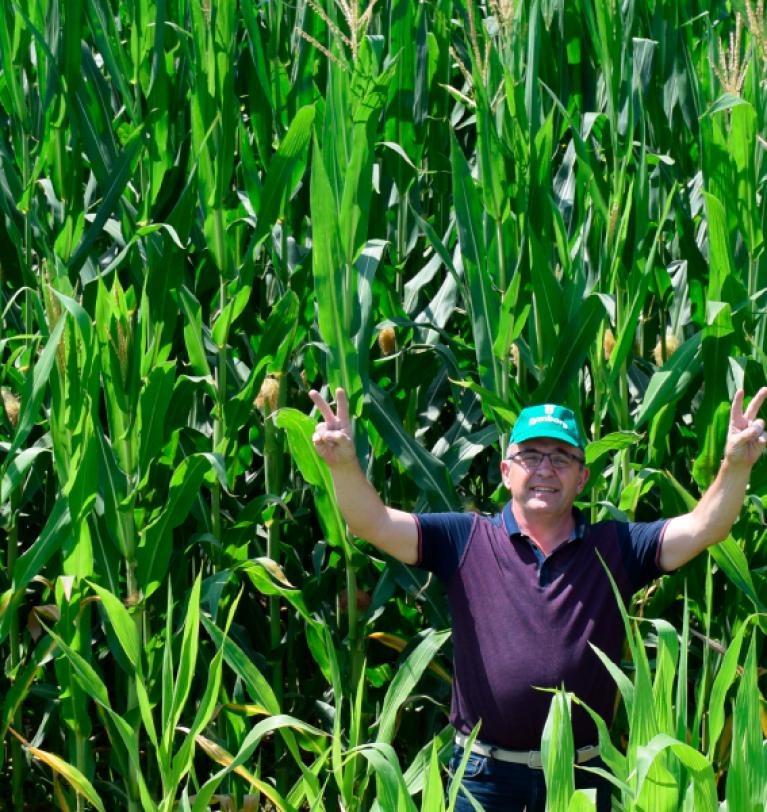 Semillas: cómo maximizar mis cosechas de manera sostenible