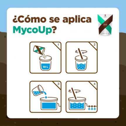 Cómo-se-aplica-MycoUp.png