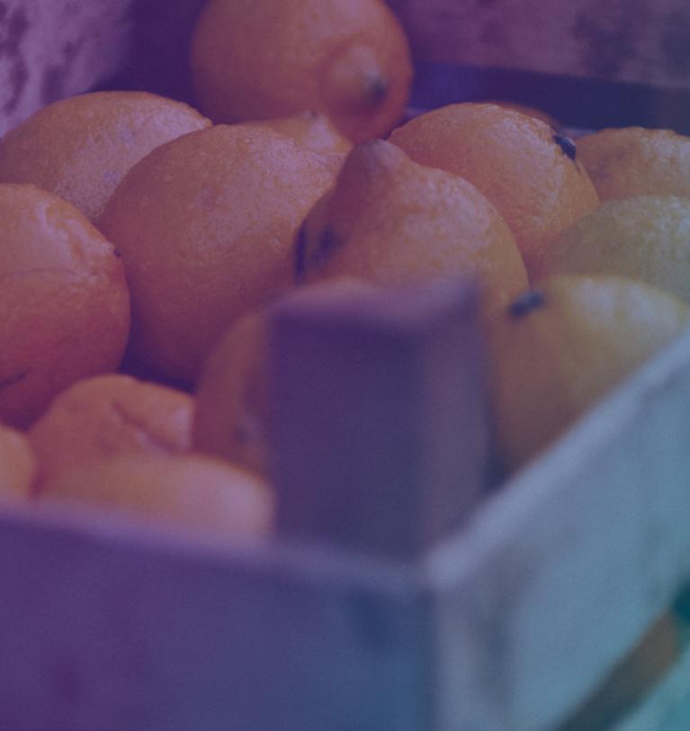 """Los agricultores chilenos donan más de 4 toneladas de fruta en apoyo a la campaña """"Dona fruta, dona salud"""" de Symborg"""