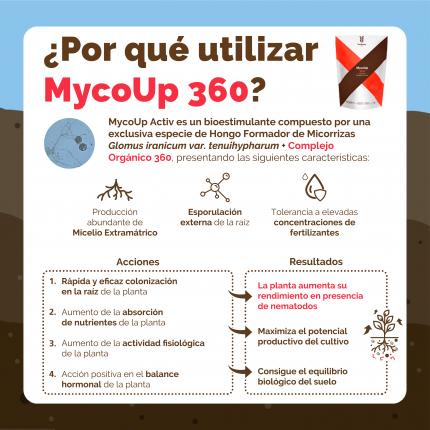 ESP-INFO-360-BENEFICIOS-01.png