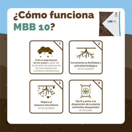CHL-INFO-MBB-FUNCIONAMIENTO-01.png