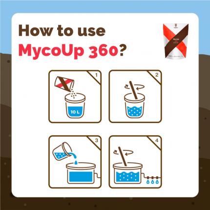 ENG-INFO-360-WEB_USE-D-01.png