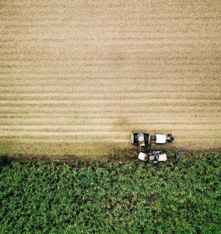 6 claves de la revolución biotecnológica en agricultura