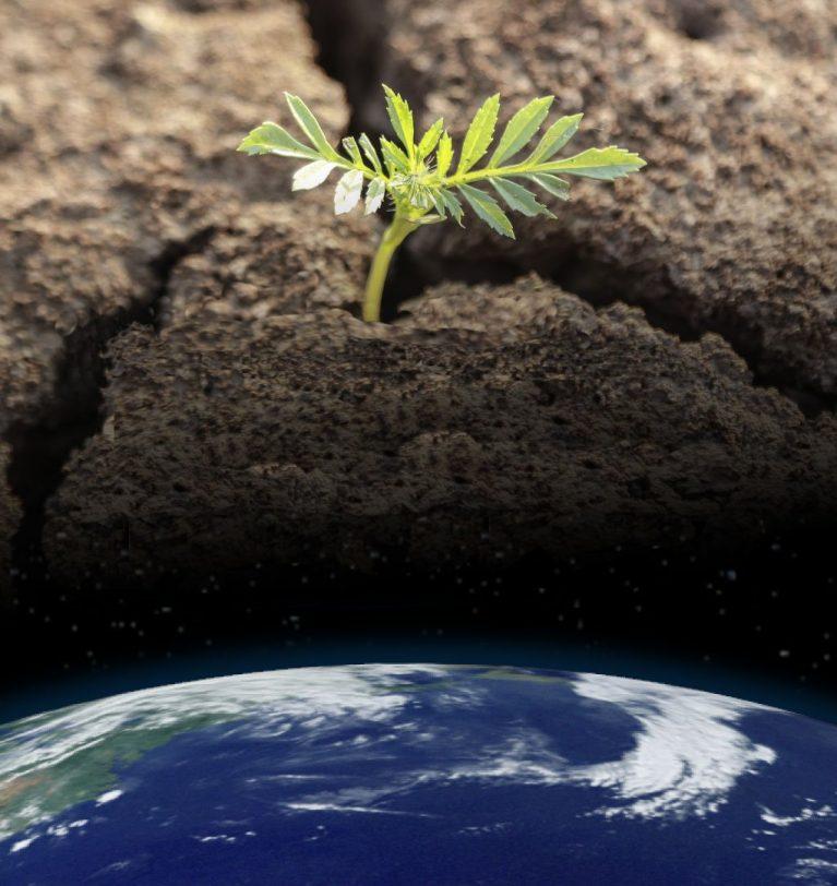 Ciclo Webinars: Aspectos clave en la producción ante el cambio climático