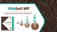 VitaSoil WP – Guía de Producto (MX)